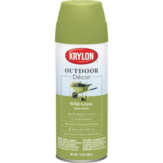 Krylon Outdoor Decor 12 Oz Satin Alkyd Spray Paint, Wild Grass